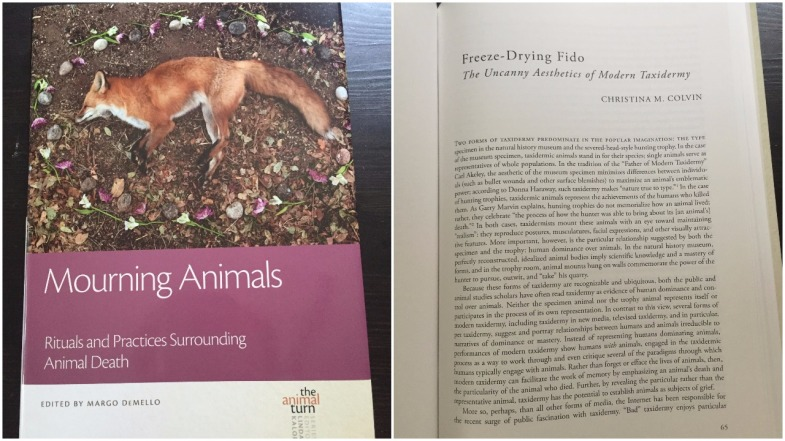 Photo of the book Mourning Animals: Rituals and Practices Surrounding Animal Death and my chapter in it